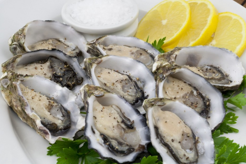 Oysters: Australia's Coffin Bay